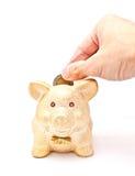 banka monety ręki męski prosiątka kładzenie s zdjęcie royalty free