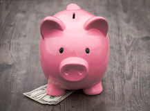 Banka /money savings przyrost/pojęcie Fotografia Stock