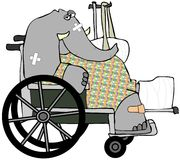 bankad elefant upp Arkivfoton