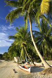banka巴顿海滩palawan菲律宾端口 免版税库存照片