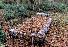 Bankbed met de herfstbladeren dat wordt behandeld royalty-vrije stock foto