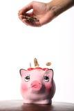 BankCoin box Stock Photos