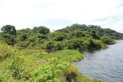 Banken eines vollen tropischen Reservoirs in Barinas Venezuela an einem teils bewölkten Tag stockbilder