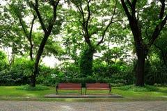 Banken in het groene park Royalty-vrije Stock Afbeeldingen