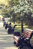 Banken in het park op Achtste van Maart-straat in Yekaterinburg op een vroege zonnige ochtend royalty-vrije stock foto's
