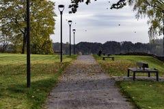 Banken met dalende bladeren in park - voorraadbeeld Stock Foto
