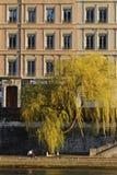 Banker av Saone River Royaltyfri Bild