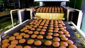 Banketbakkerijfabriek Productielijn van bakselkoekjes Selectieve nadruk stock footage