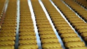 Banketbakkerijfabriek voor de productie van koekjes stock footage