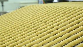 Banketbakkerijfabriek voor de productie van koekjes stock video