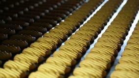 Banketbakkerijfabriek voor de productie van koekjes stock videobeelden