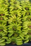 bankground verde crudo del modelo de la pila del plátano Fotos de archivo libres de regalías