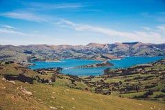 Bankhalvö i Nya Zeeland Royaltyfria Foton