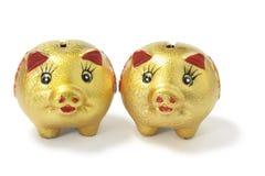 banki chińskiego złoty świnka Obraz Royalty Free