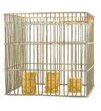Banking - coins in cage on white #3 royalty free stock photos