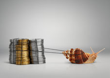 Banking concept snail pulling money, copy space. Banking concept snail pulling money with copy space Royalty Free Stock Photography