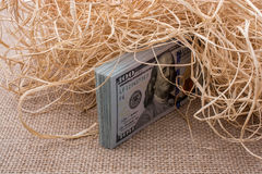 Banknote bundle of US dollar in a straw pile Royalty Free Stock Photography
