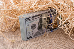 Banknote bundle of US dollar in a straw pile Stock Image