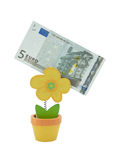 Banknote des Euro 5 in einer Halterung Stockfotos