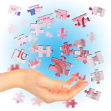 Banknote Euro Is Divided Into Puzzles Royalty Free Stock Photo
