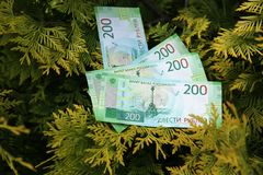 Banknote two hundred Russian rubles. Cash paper green money on the branches of the tree. Finance stock photos