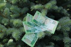 Banknote two hundred Russian rubles. Cash paper green money on the branches of the tree. Finance royalty free stock photo