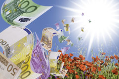Banknotes. This image shows some banknotes flying over a field of poppies Stock Photos