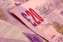 banknotes Στοκ Εικόνες