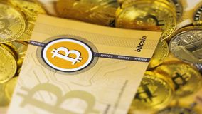 Banknotes fall on coins of bitcoin resource macro. Slow motion macro banknotes fall on golden coins of bitcoin resource which transactions use cryptographic keys stock video
