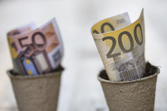 Banknotes in the pots Royalty Free Stock Photos