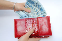 Banknotes and purse Royalty Free Stock Photos