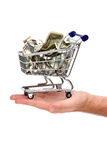Banknotes in shopping basket on palm Royalty Free Stock Photo