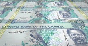 Banknotes of twenty five gambian dalasis of Gambia rolling, cash money, loop. Series of banknotes of twenty five gambian dalasis of the Central Bank of Gambia stock illustration