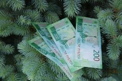 Banknotes Two hundred Russian rubles. Cash paper green money on green spruce. Finance royalty free stock images