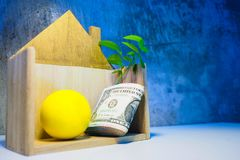Banknotes in wood house There are many coin and trees leaf grow royalty free stock image