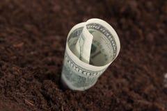 Banknotu pieniądze w ziemi fotografia royalty free