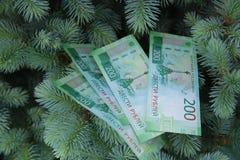 Banknoty Dwie?cie Rosyjskich rubli Got?wkowy papierowy zielony pieni?dze na zielonej ?wierczynie obrazy royalty free
