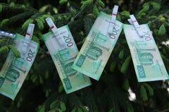 Banknoty Dwie?cie Rosyjskich rubli Got?wkowy papierowy zielony pieni?dze na zielonej ?wierczynie zdjęcie stock