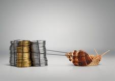 Bankrörelsebegreppssnigel som drar pengar, kopieringsutrymme Royaltyfri Fotografi