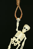 Bankrupt concept, rope noose with hangman's knot hanging in front, Halloween background Royalty Free Stock Image