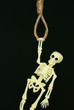 Bankrupt concept, rope noose with hangman's knot hanging in front, Halloween background Royalty Free Stock Images