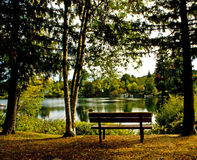 On the Banks of the Cowichan River. An early fall day in Lake Cowichan on Vancouver Island, BC Royalty Free Stock Photo
