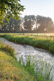 Banks of a ditch in early morning light Stock Photography