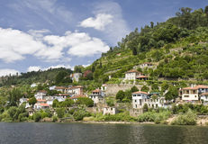 Banks of the Douro River Royalty Free Stock Photography