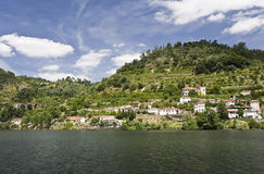 Banks of the Douro River Royalty Free Stock Image