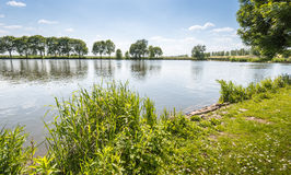 At the banks of a Dutch pond in spring Stock Image