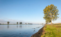 Banks of a Dutch river early in the morning Stock Photos