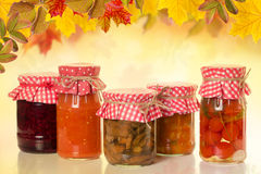 Banks with homemade preserves. Stock Image