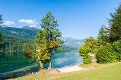 Banks of lake Bohinj at Ribcev laz. Julian alps Stock Photography