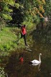Banks of Lake Susan Royalty Free Stock Photos